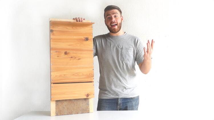 modern bat house plans