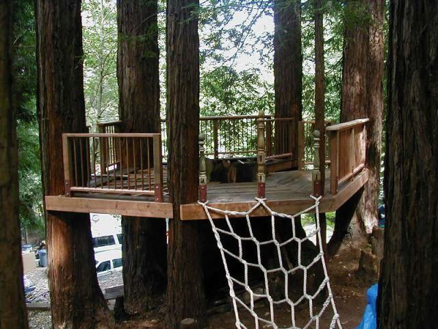 Oldgrowth Tree House Plans