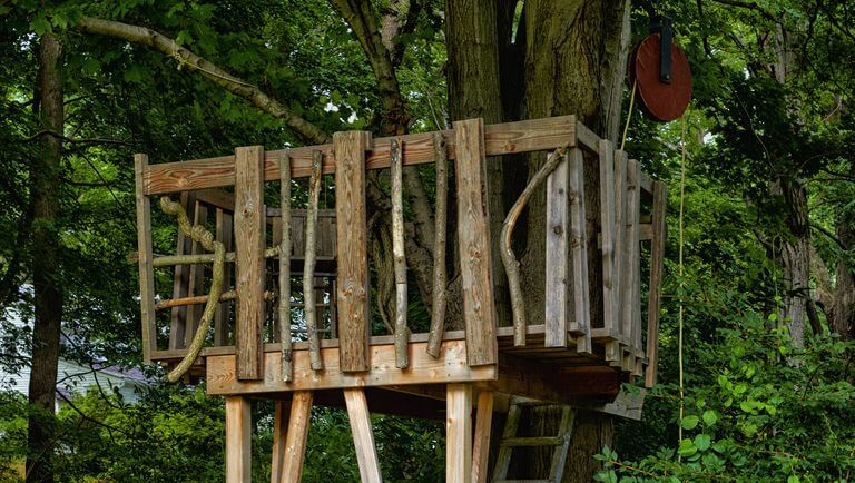 Wood Branch Tree House