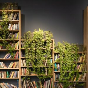 bookshelf with ivy growing on it