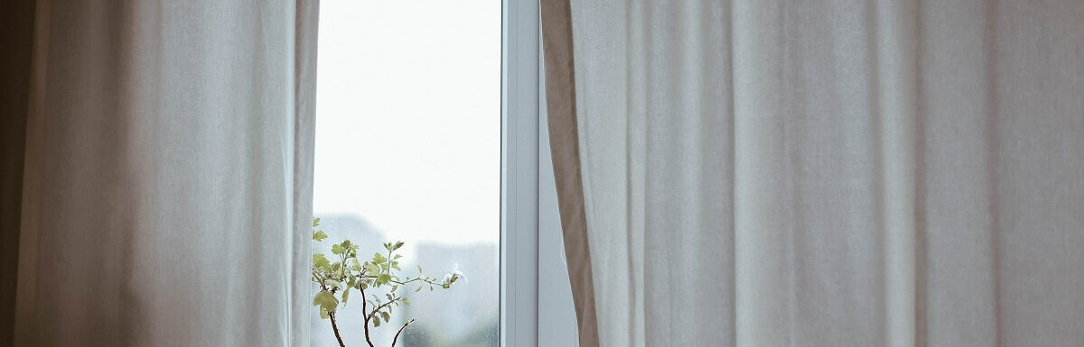 curtains and plant