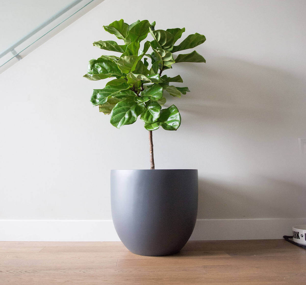 Large Round Matte Gray Planter