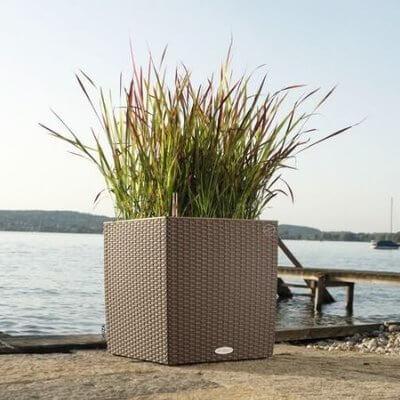 Large Self-Watering Wicker Planter Box