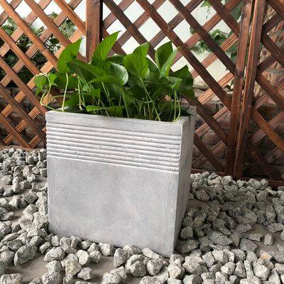 Minimalist Concrete Planter