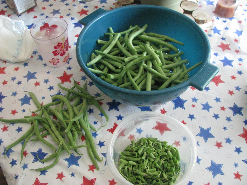 sorting green beans for canning