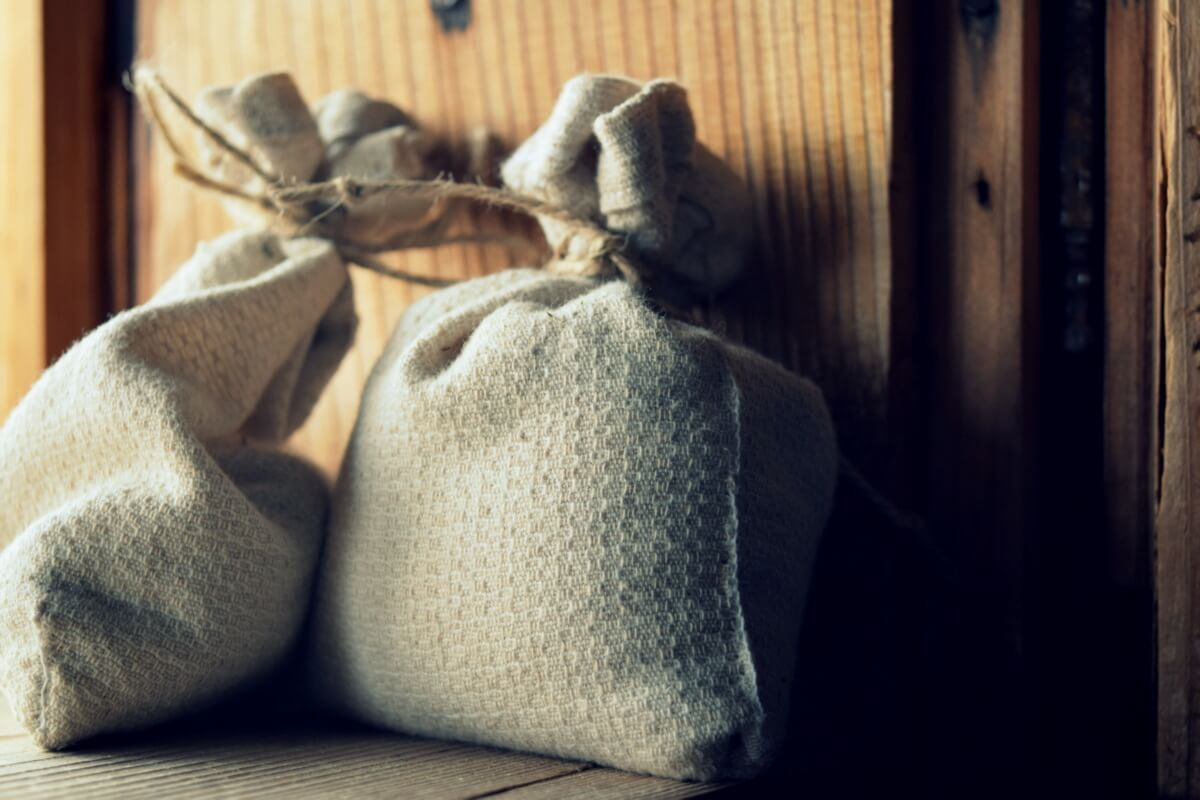 storing garden seeds in cloth bag
