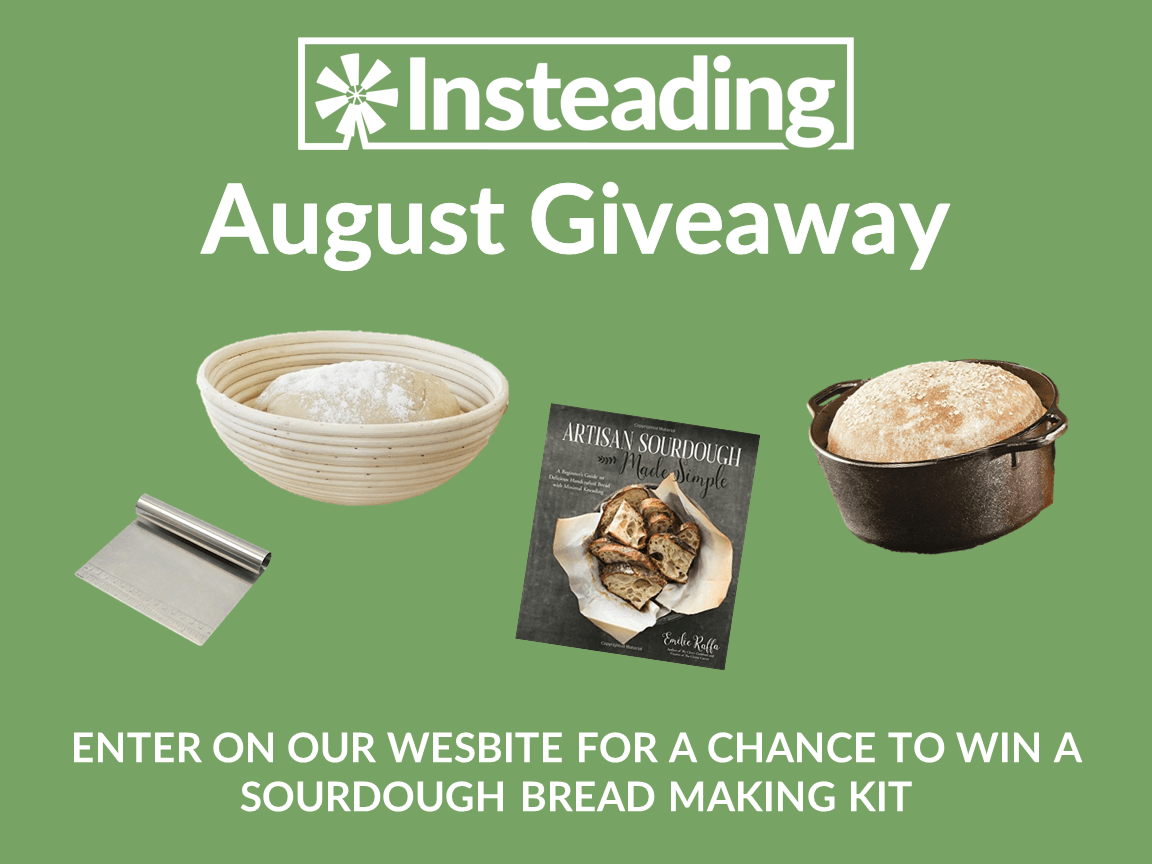 Insteading Giveaway – August 2019