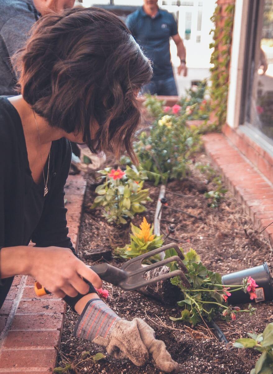 raking garden bed