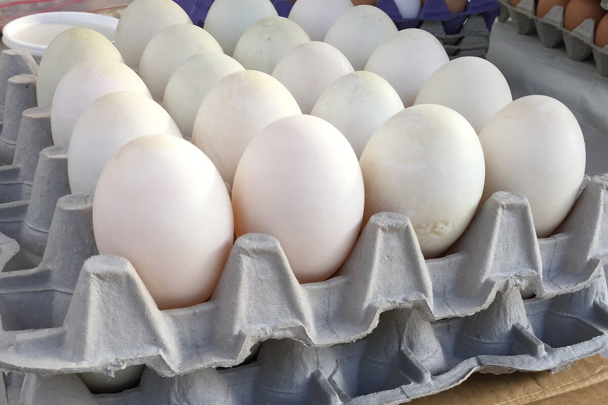 Why Duck Eggs Are The Best Thing You've Never Eaten (Yet