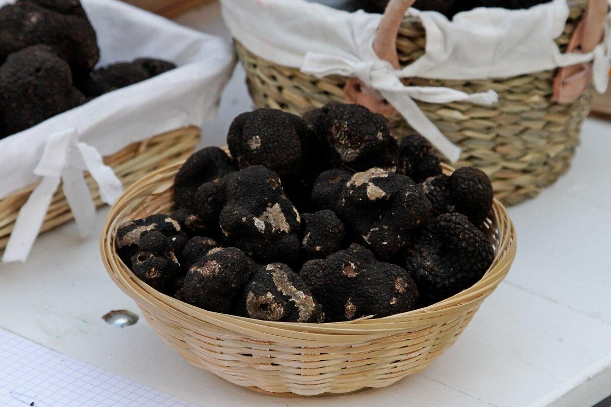 black truffles in basket
