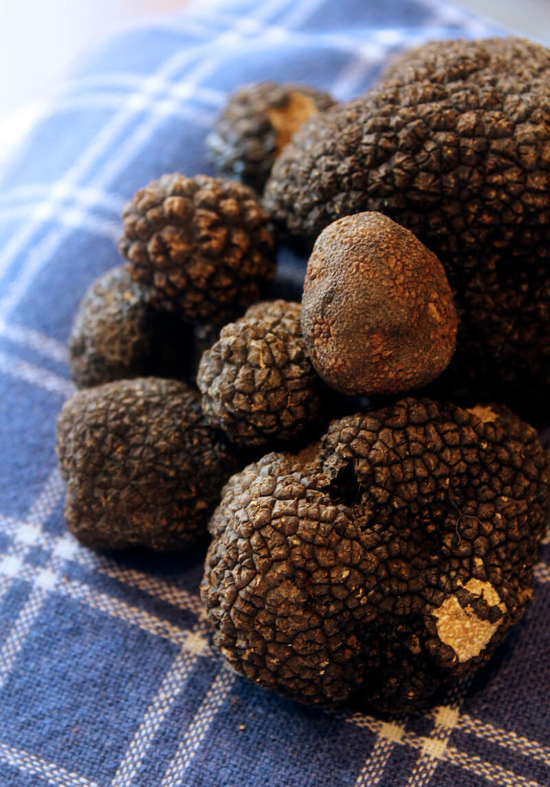 How To Grow Truffles