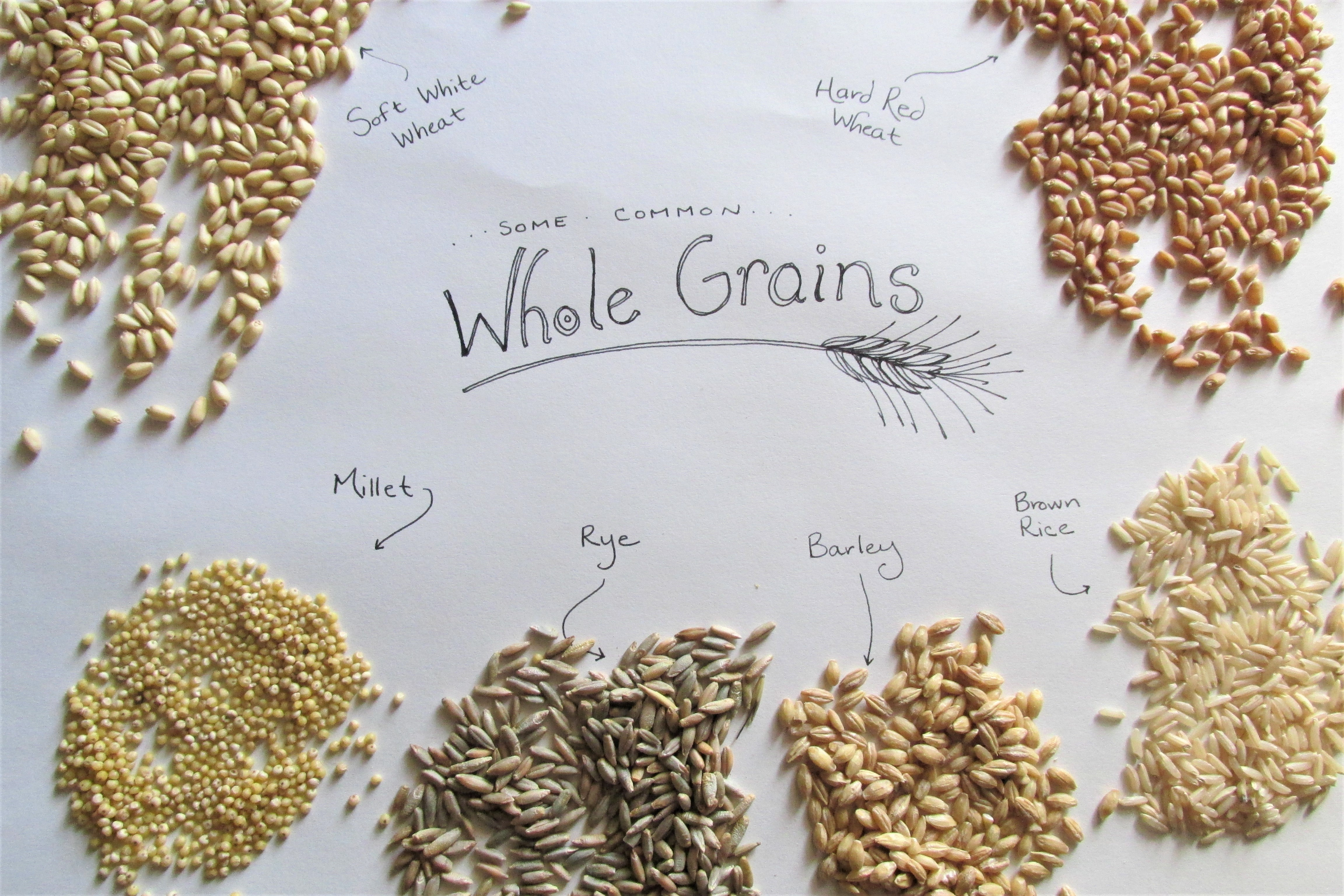 whole grains and names
