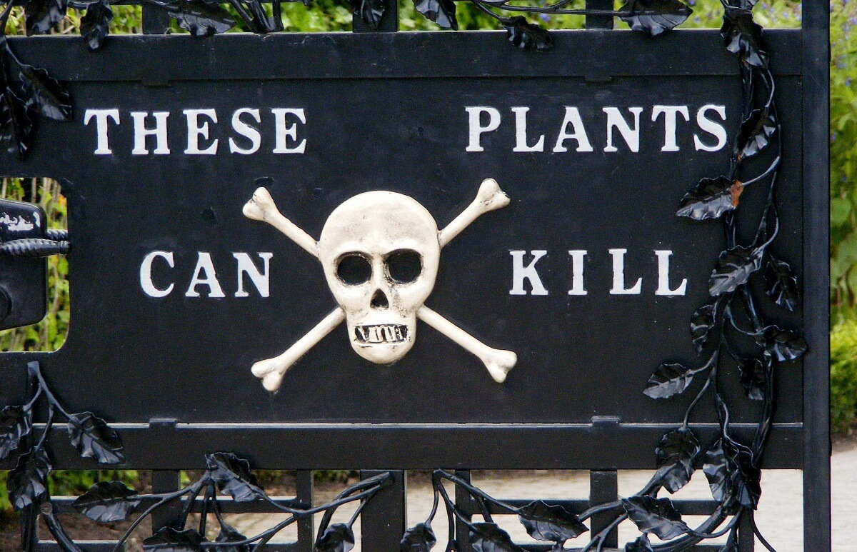 these plants can kill sign