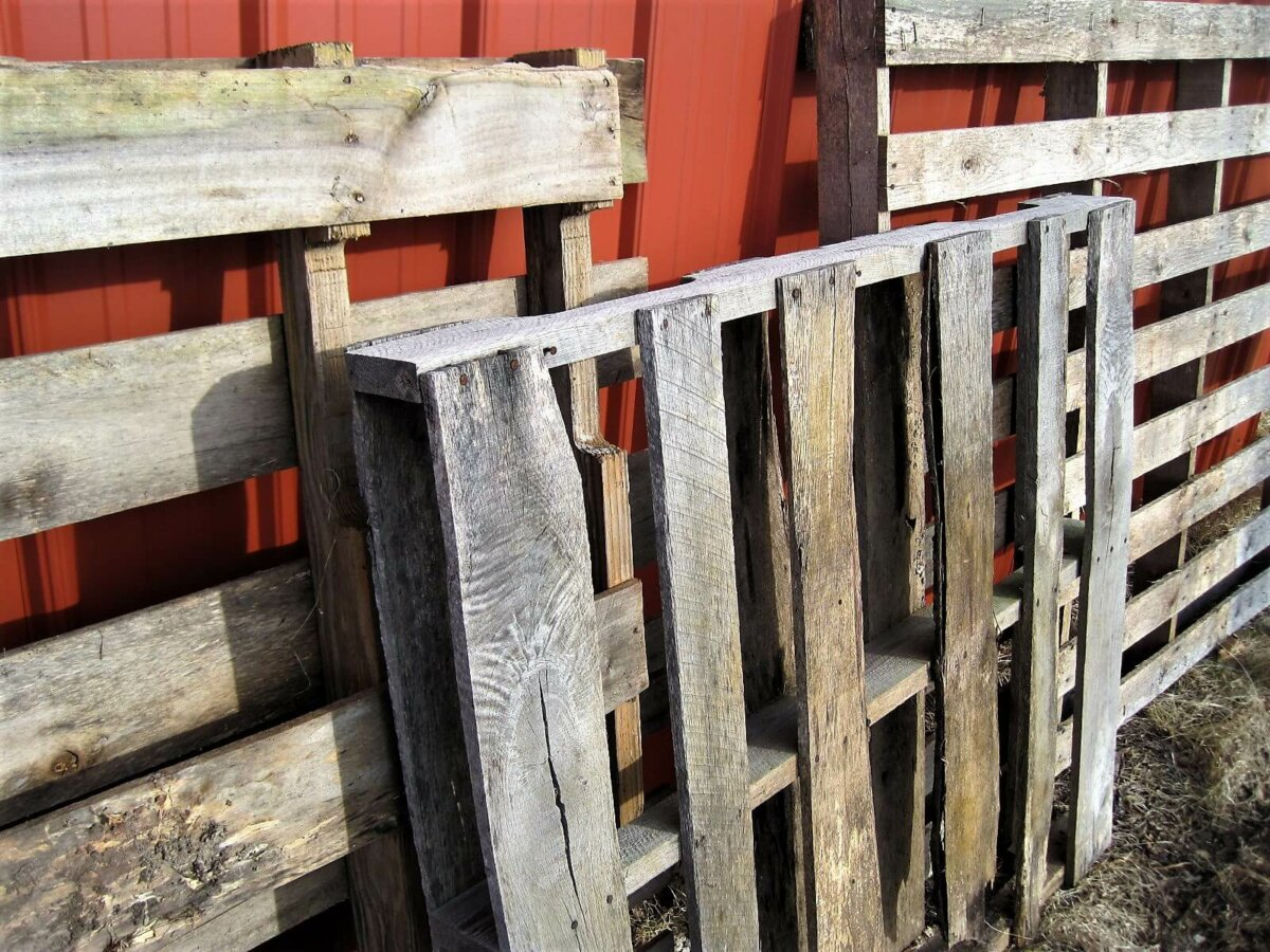 wood pallets for firewood