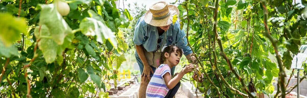older person and child gardening