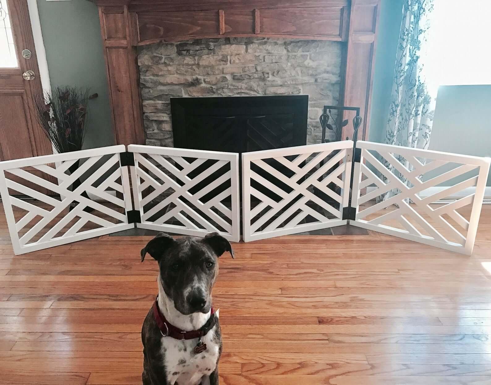 pet-friendly room divider