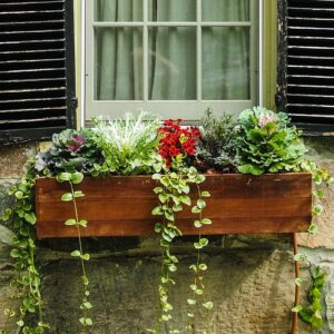 flower box ideas