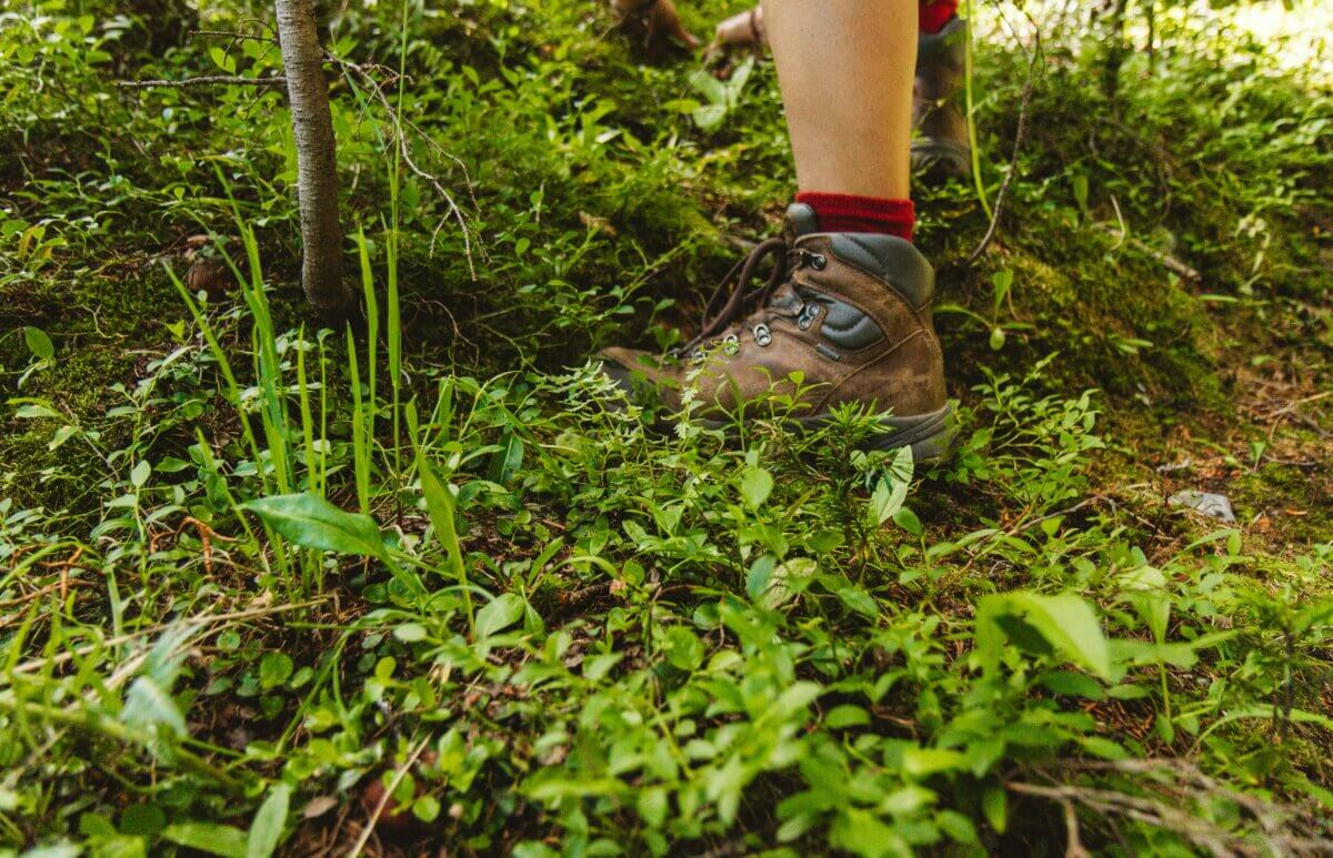 hiking boots and foraged plants