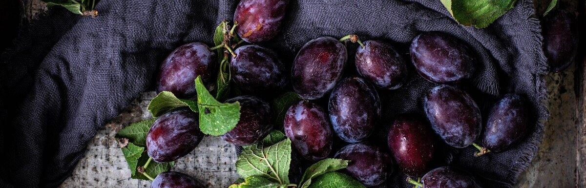 plum recipes