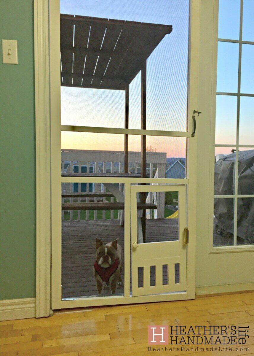 diy screen door ideas with pet cut out