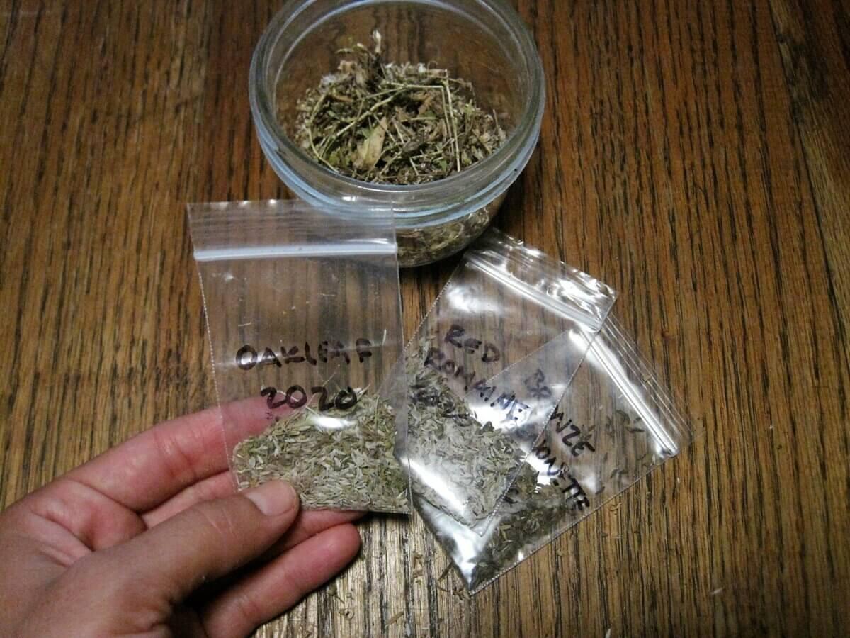 lettuce seed in bags