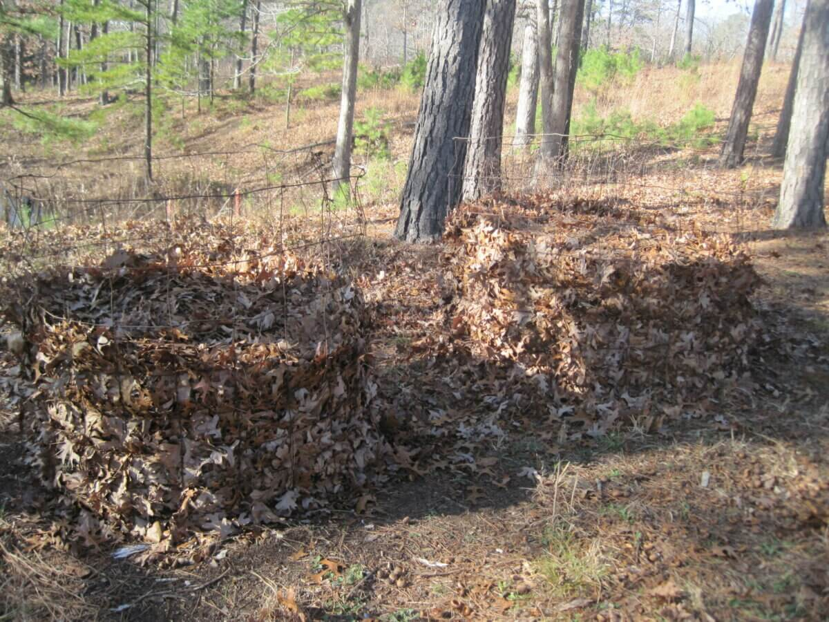 how to make soil acidic with leaf mold