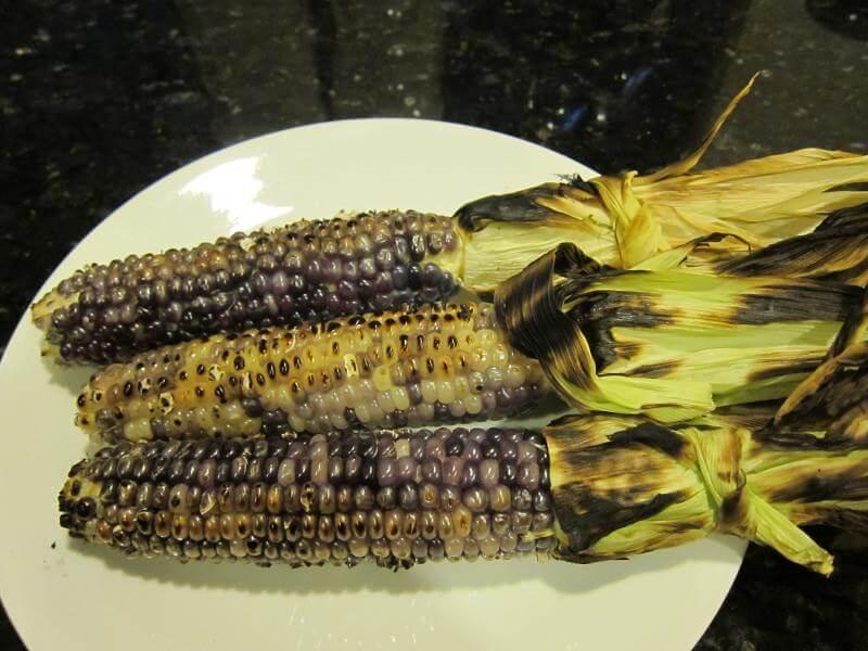 blue corn grilled