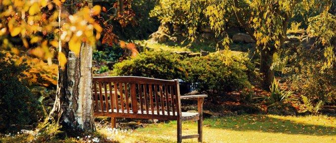 garden bench plans