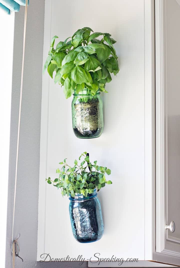 hanging-mason-jar-planters