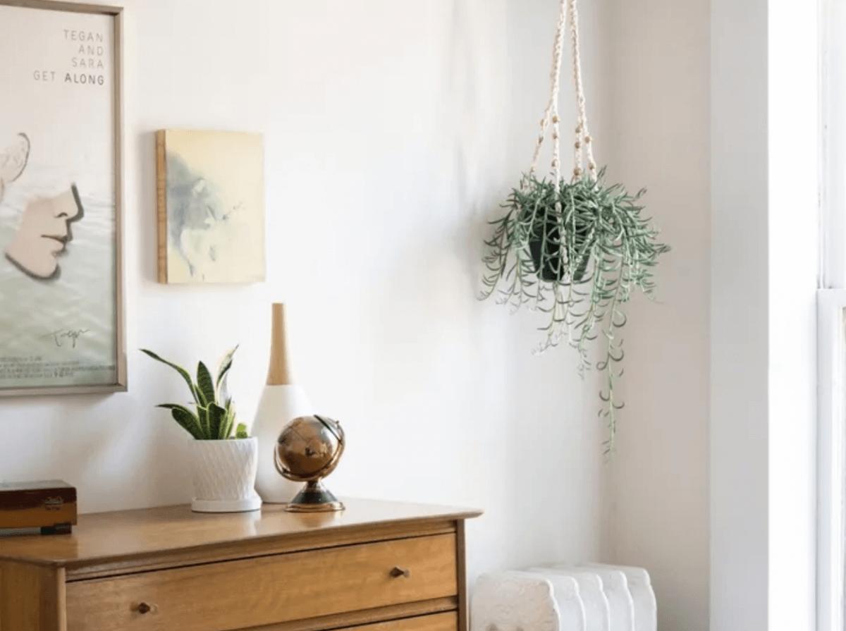 crochet-plant-hanger