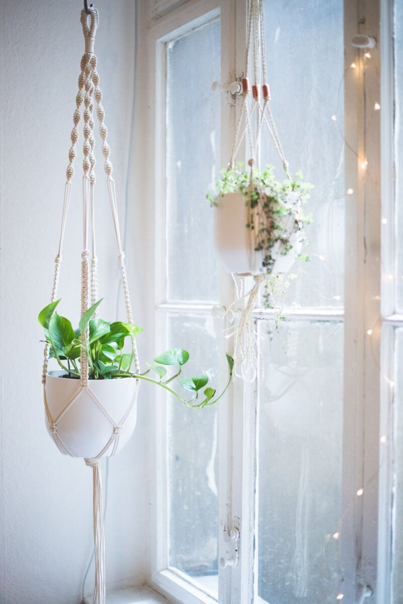 indoor hanging planters