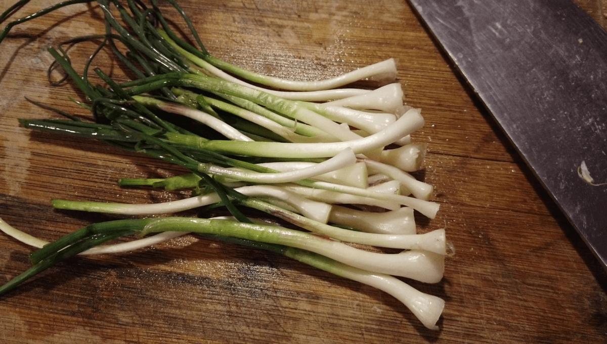 chopped-field-garlic