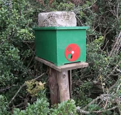 swarm-box-hive