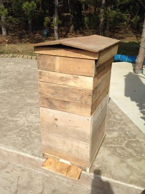 palet-beehive