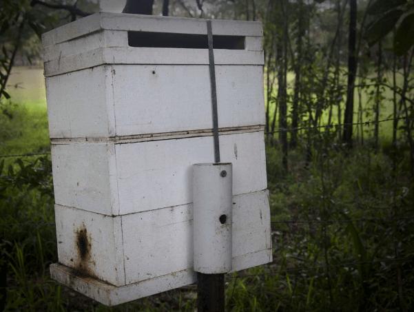modified-oath-hive