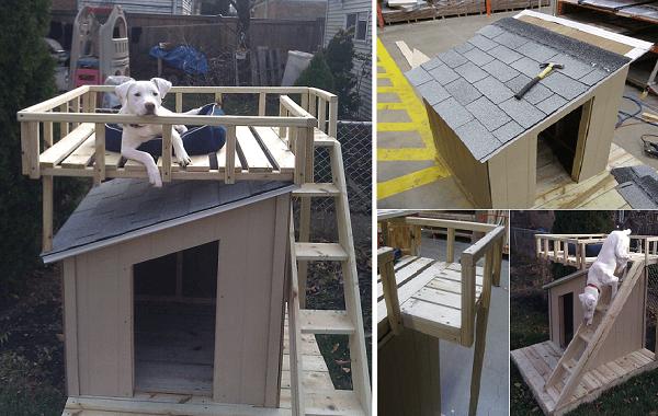 Roof Deck DIY Dog House Plans