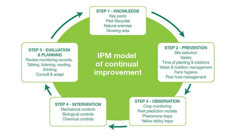 Integrated Pest Management model