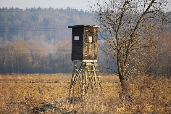 Inexpensive Hunting Blind