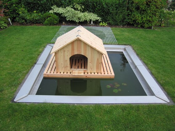 Floating DIY Duck House