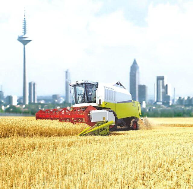 farming on the outskirts of Frankfurt