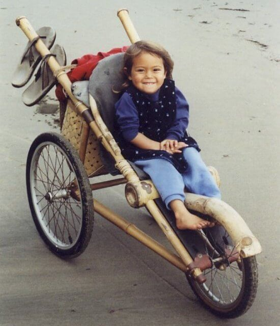 bamboo stroller