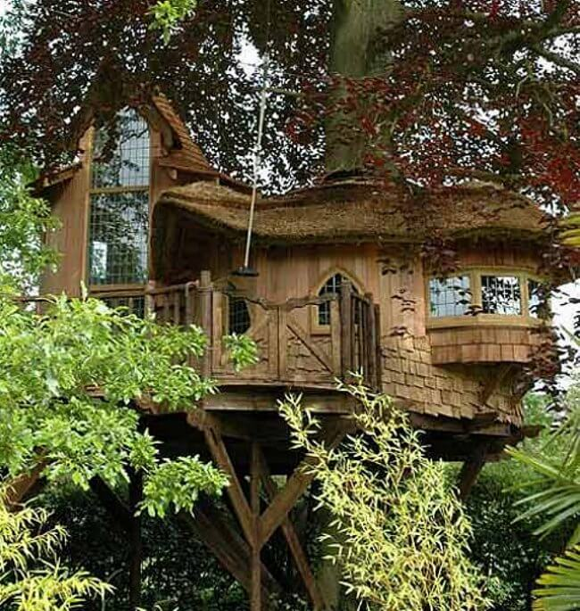 wood tree house
