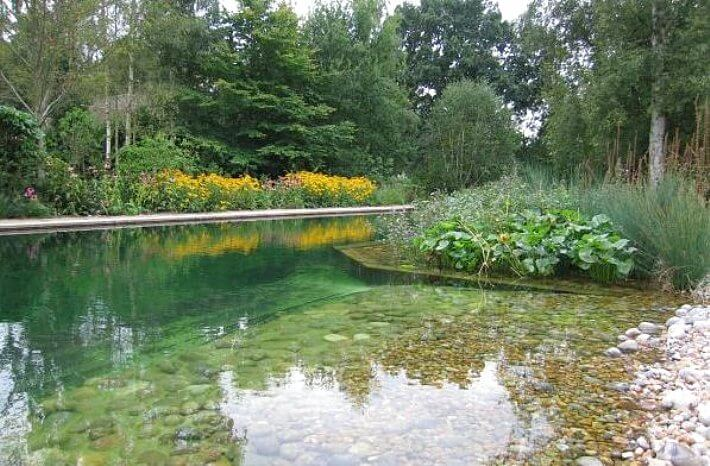 Natural Pools Or Swimming Ponds • Insteading