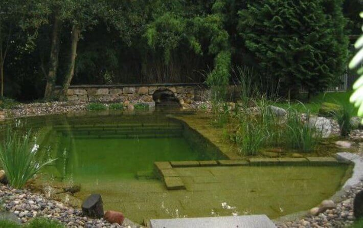 Natural Pools Or Swimming Ponds Insteading