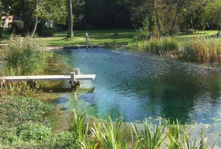 how to build a natural pool with liner