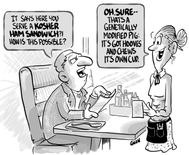 Genetically modified cartoons insteading glenfair gmo pork publicscrutiny Choice Image