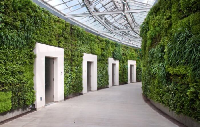 green wall inside