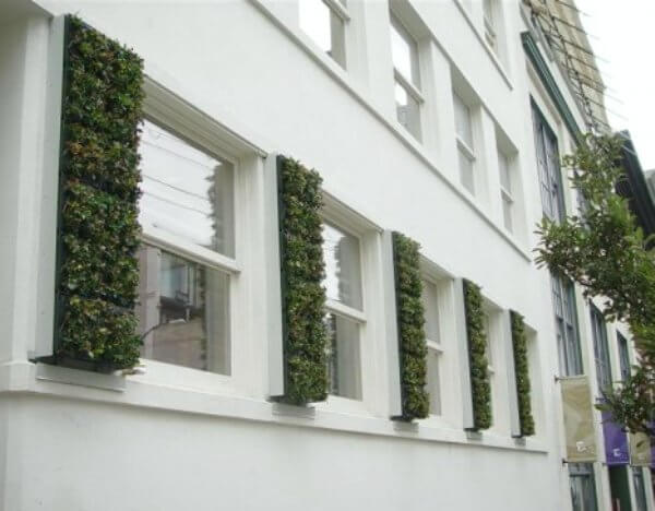 plant shutters