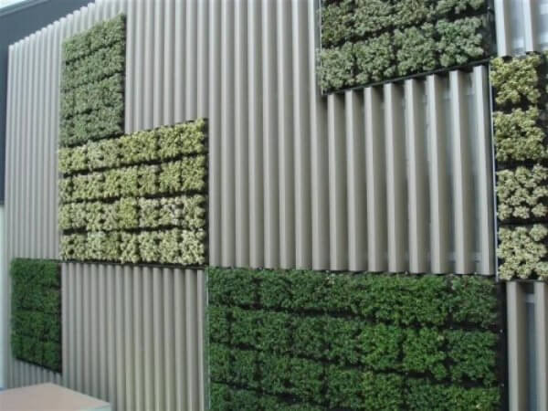 planted wall