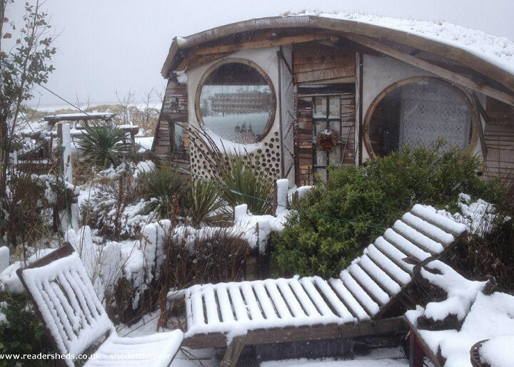shed of the year owl house